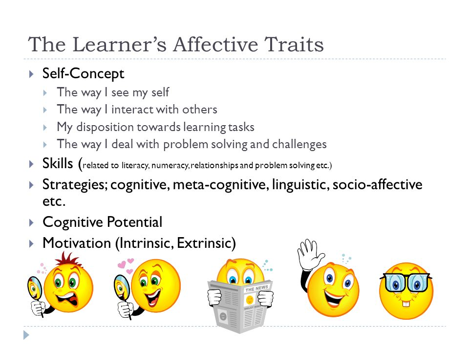 The Learner's Affective Traits