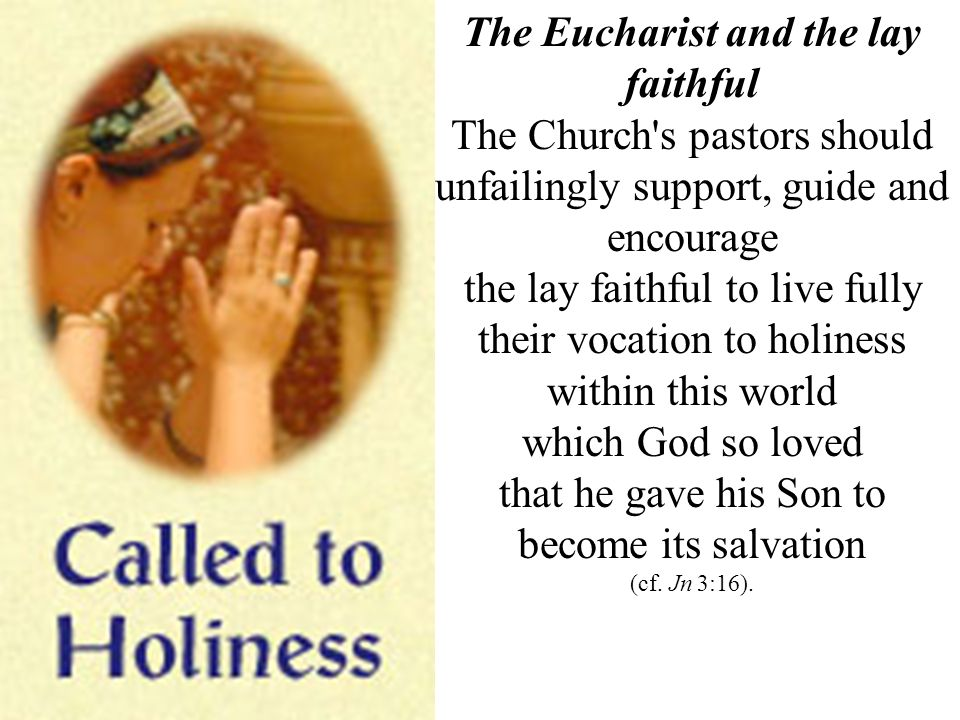 The Eucharist and the lay faithful