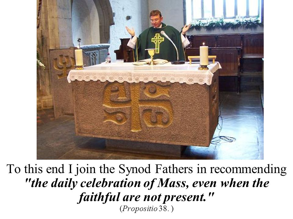 To this end I join the Synod Fathers in recommending