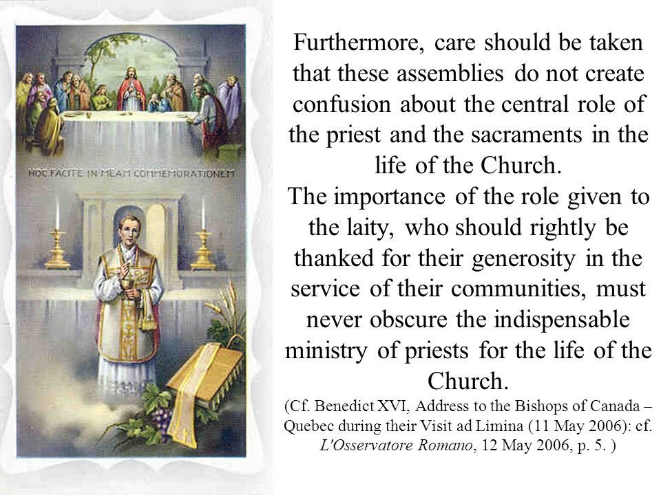 Furthermore, care should be taken that these assemblies do not create confusion about the central role of the priest and the sacraments in the life of the Church.