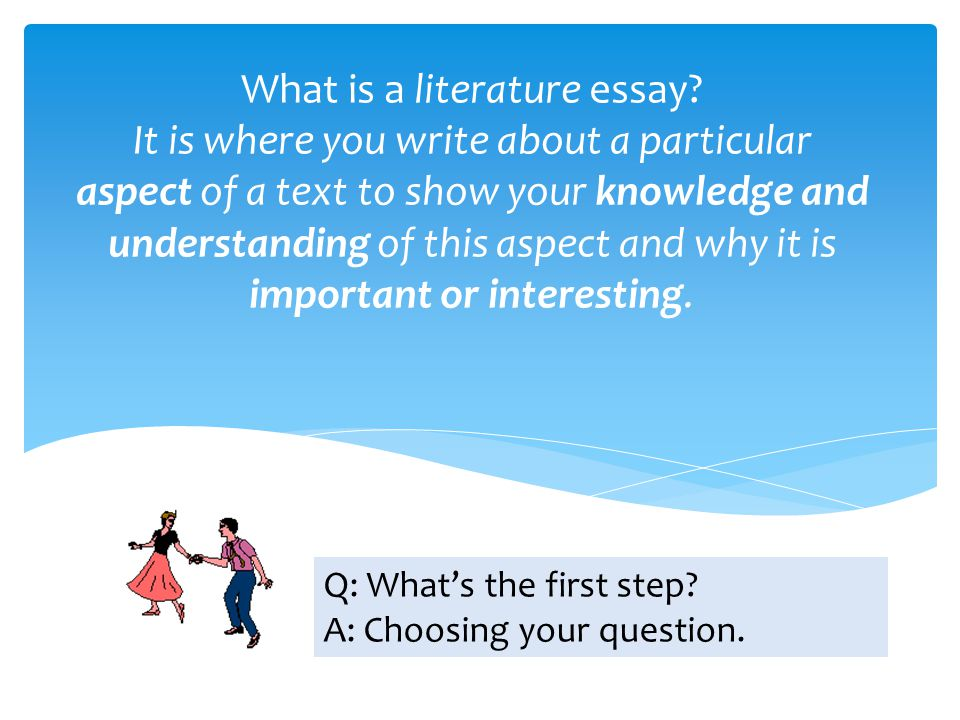 What is a literature essay