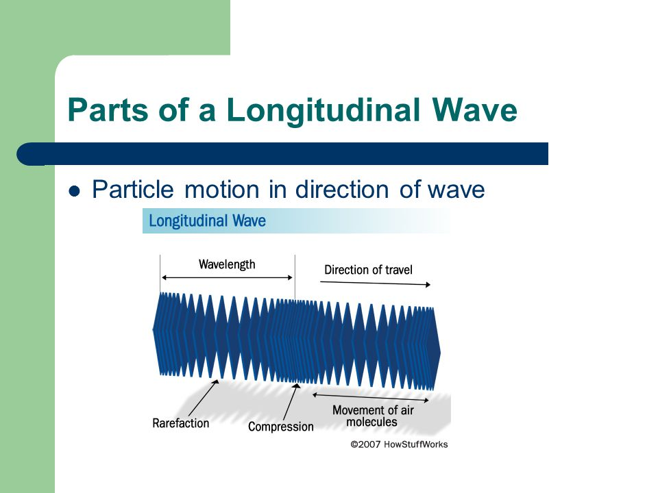 Parts of a Longitudinal Wave