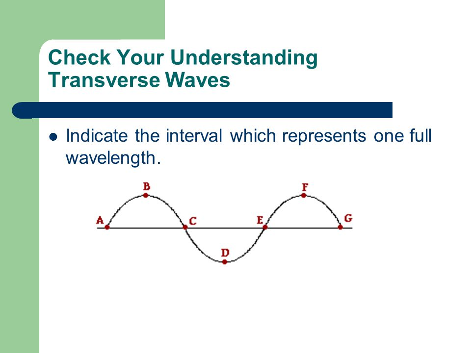 Check Your Understanding Transverse Waves