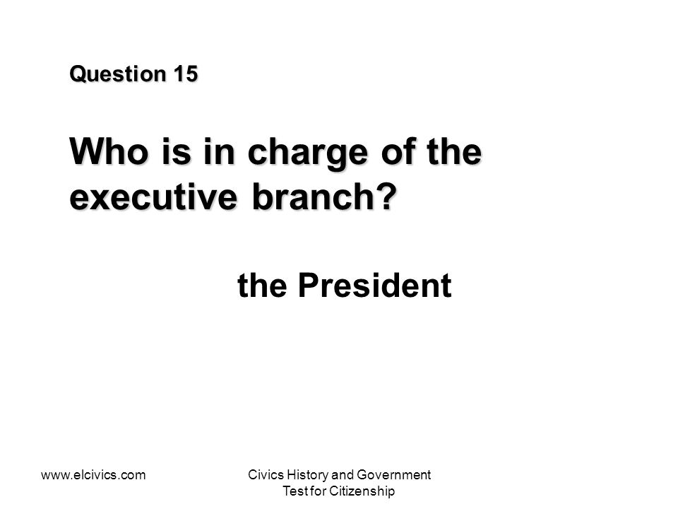 Question 15 Who is in charge of the executive branch
