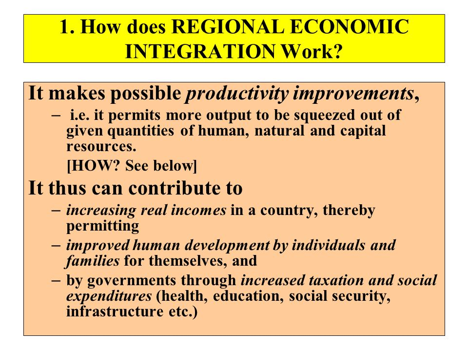 1. How does REGIONAL ECONOMIC INTEGRATION Work