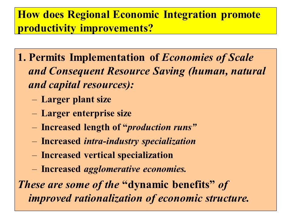 How does Regional Economic Integration promote productivity improvements