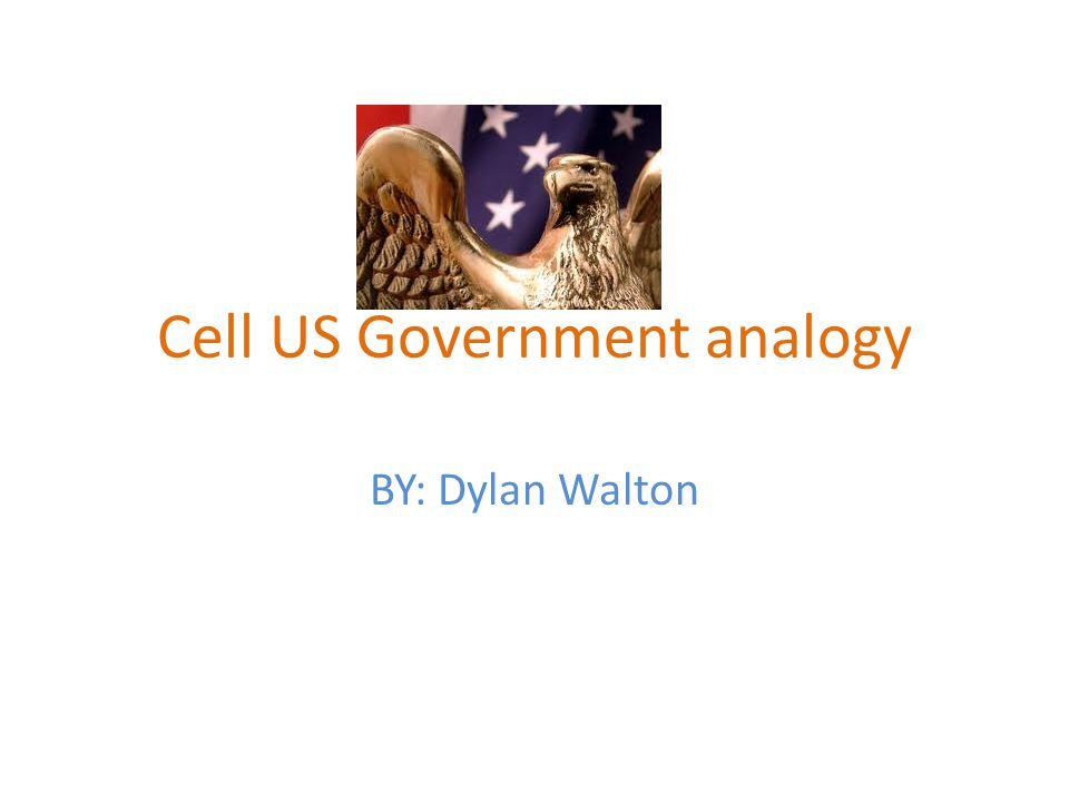 Cell US Government analogy