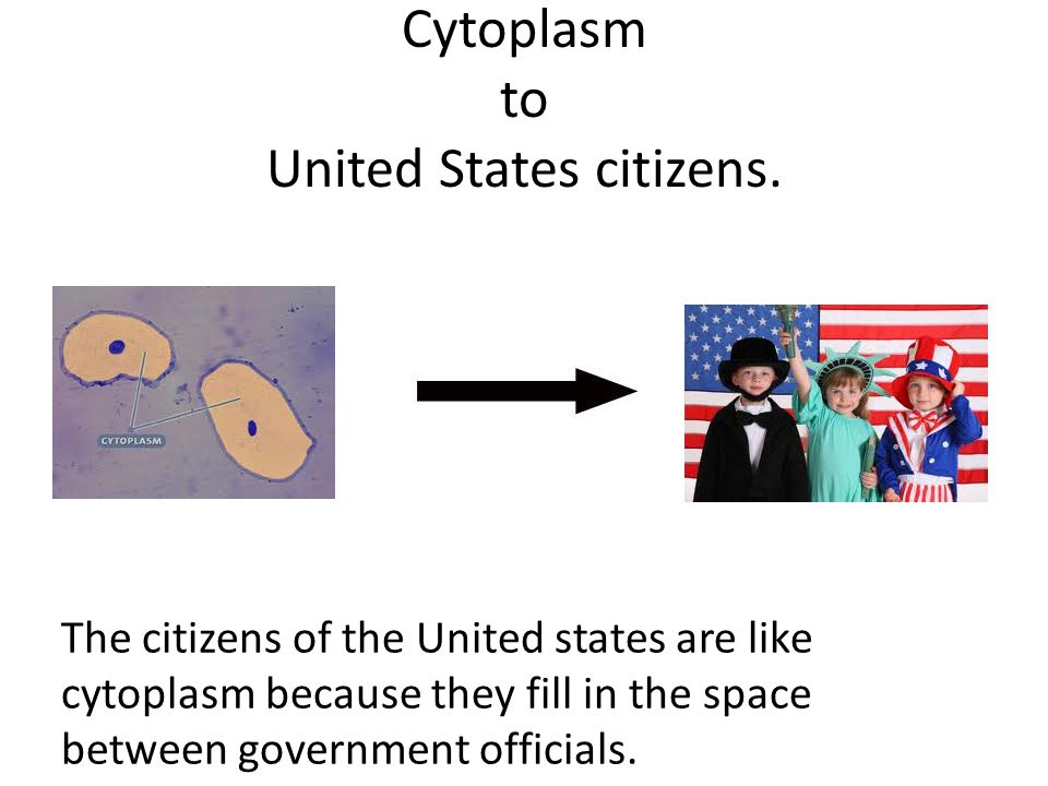 Cytoplasm to United States citizens.
