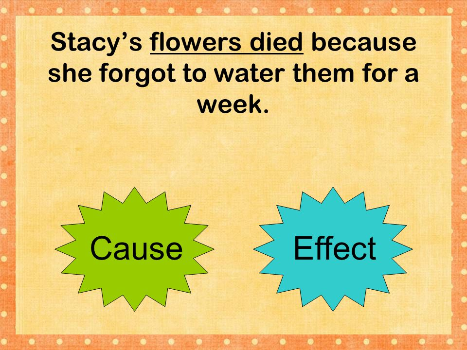 Stacy's flowers died because she forgot to water them for a week.