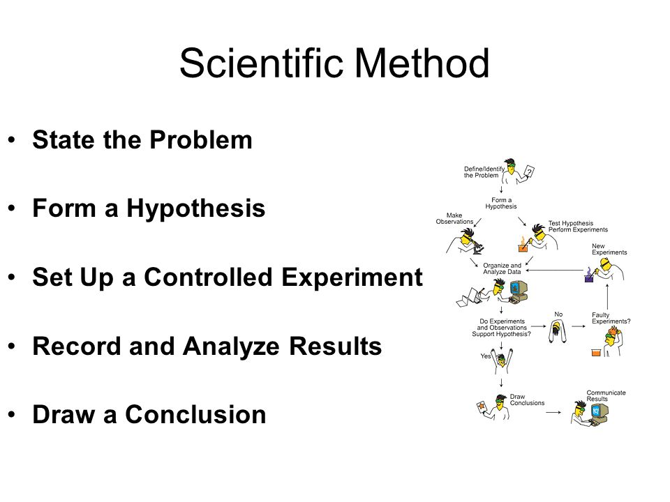 Scientific Method State the Problem Form a Hypothesis