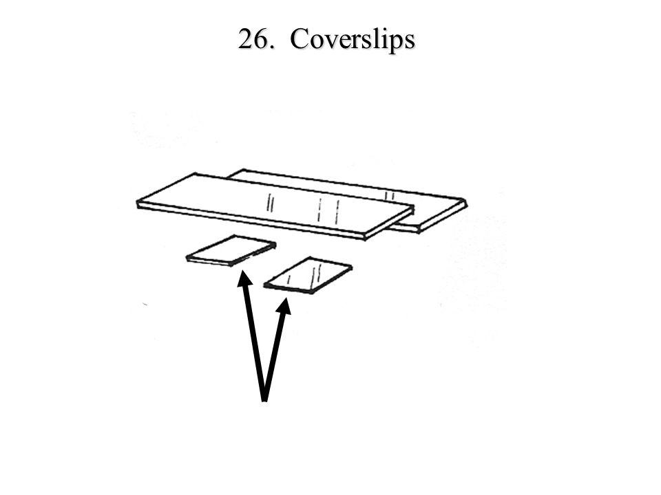 26. Coverslips