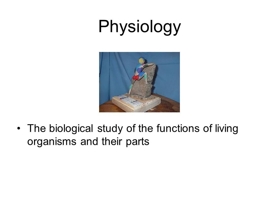 Physiology The biological study of the functions of living organisms and their parts
