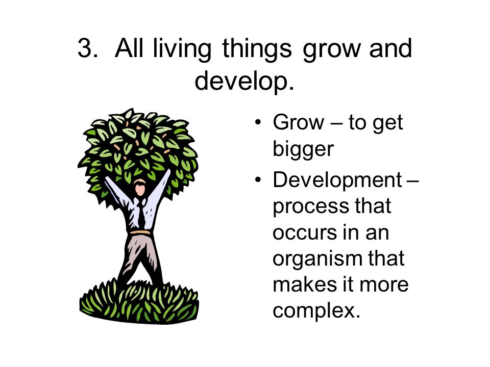 3. All living things grow and develop.