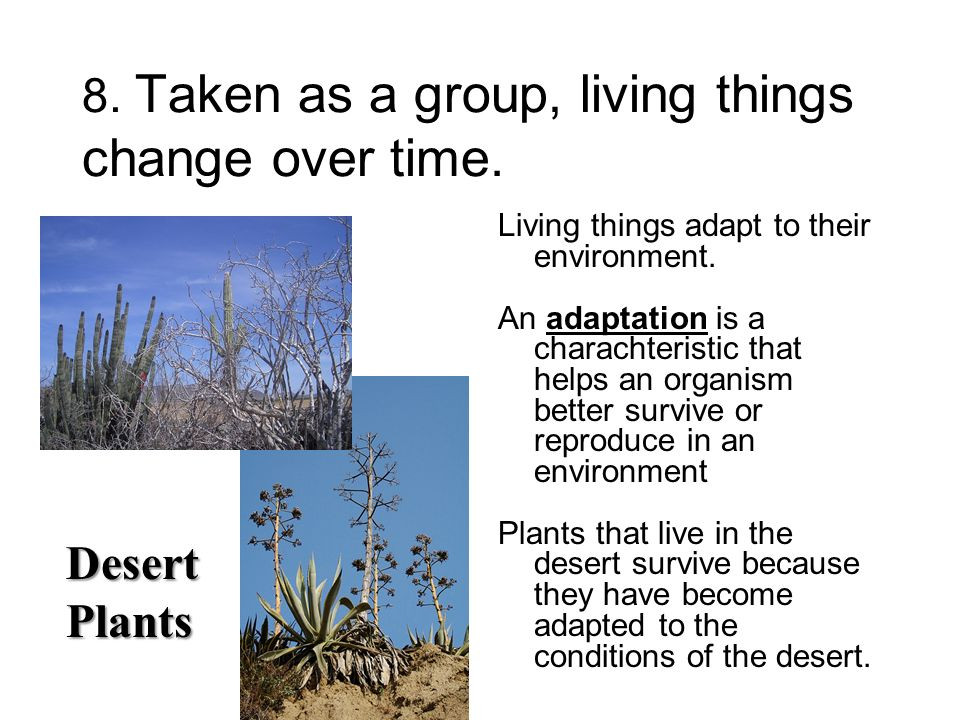 8. Taken as a group, living things change over time.