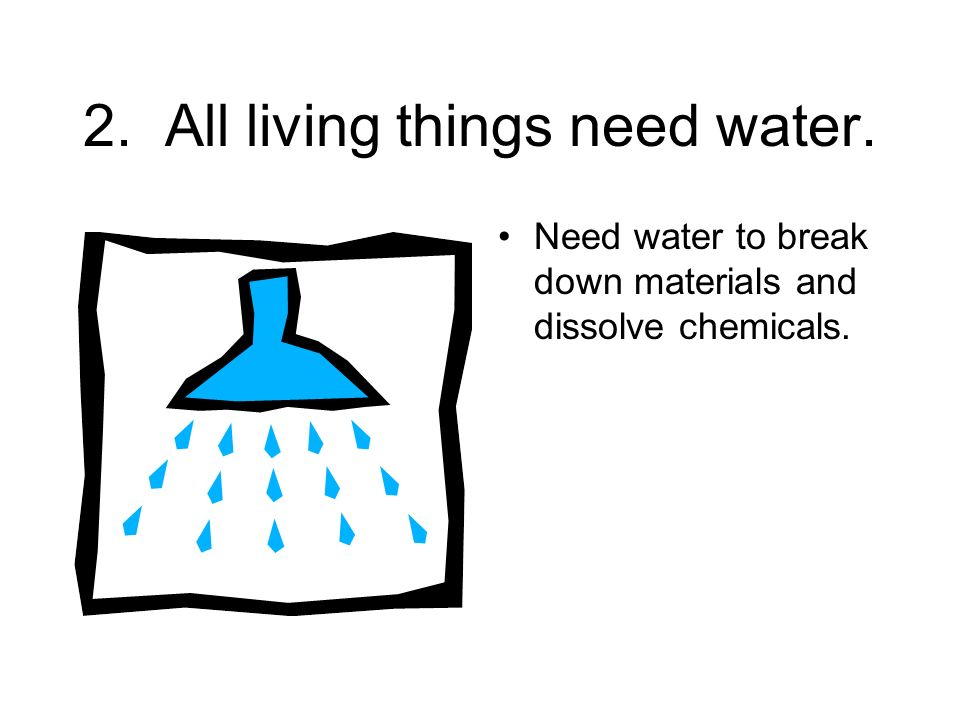 2. All living things need water.