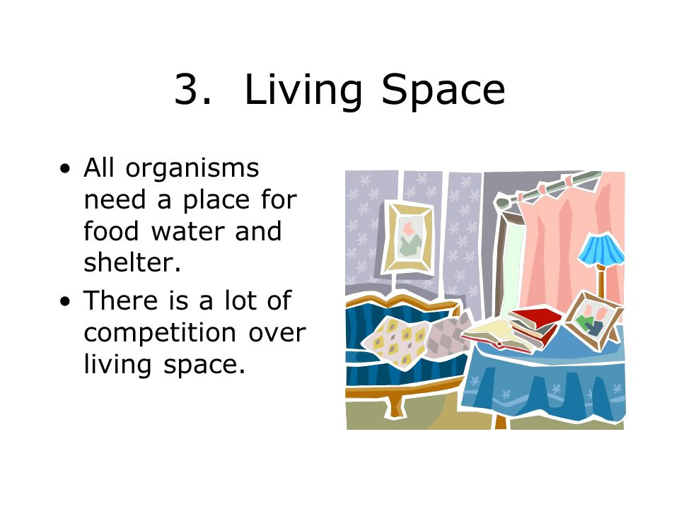 3. Living Space All organisms need a place for food water and shelter.