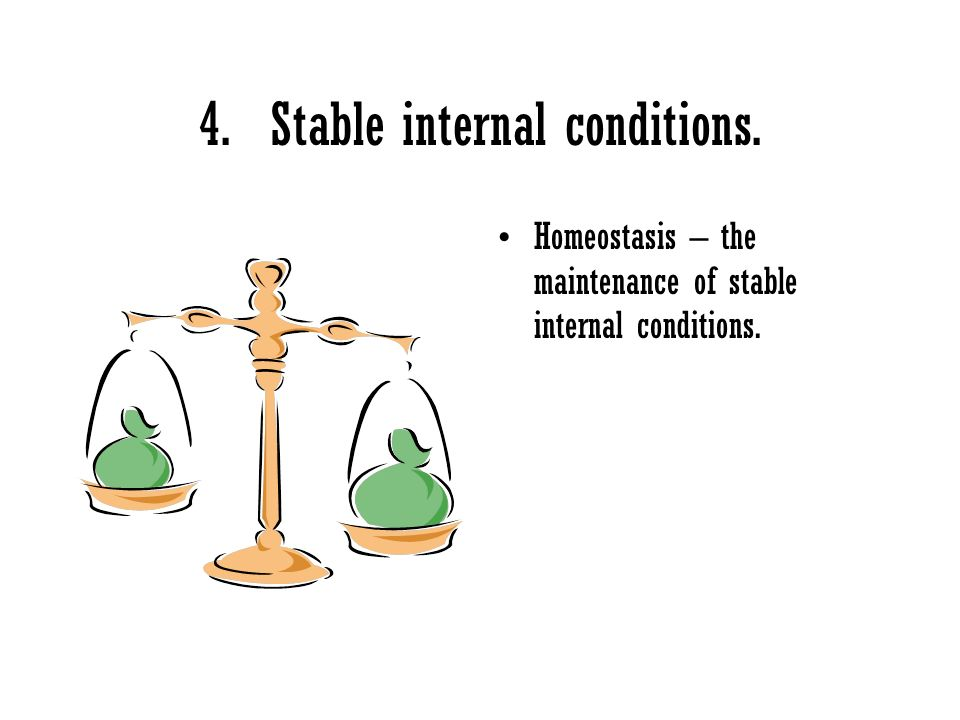 4. Stable internal conditions.