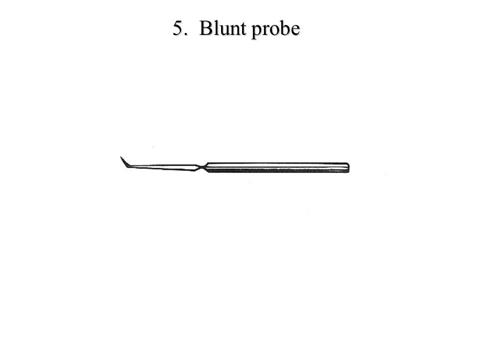 5. Blunt probe