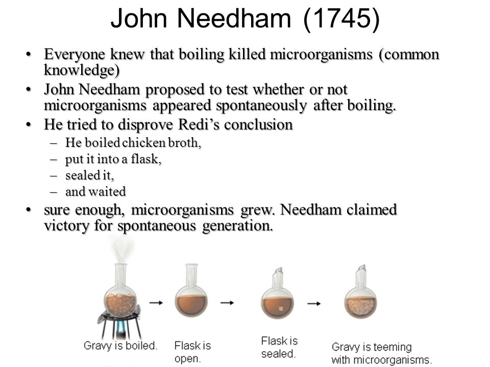 John Needham (1745) Everyone knew that boiling killed microorganisms (common knowledge)