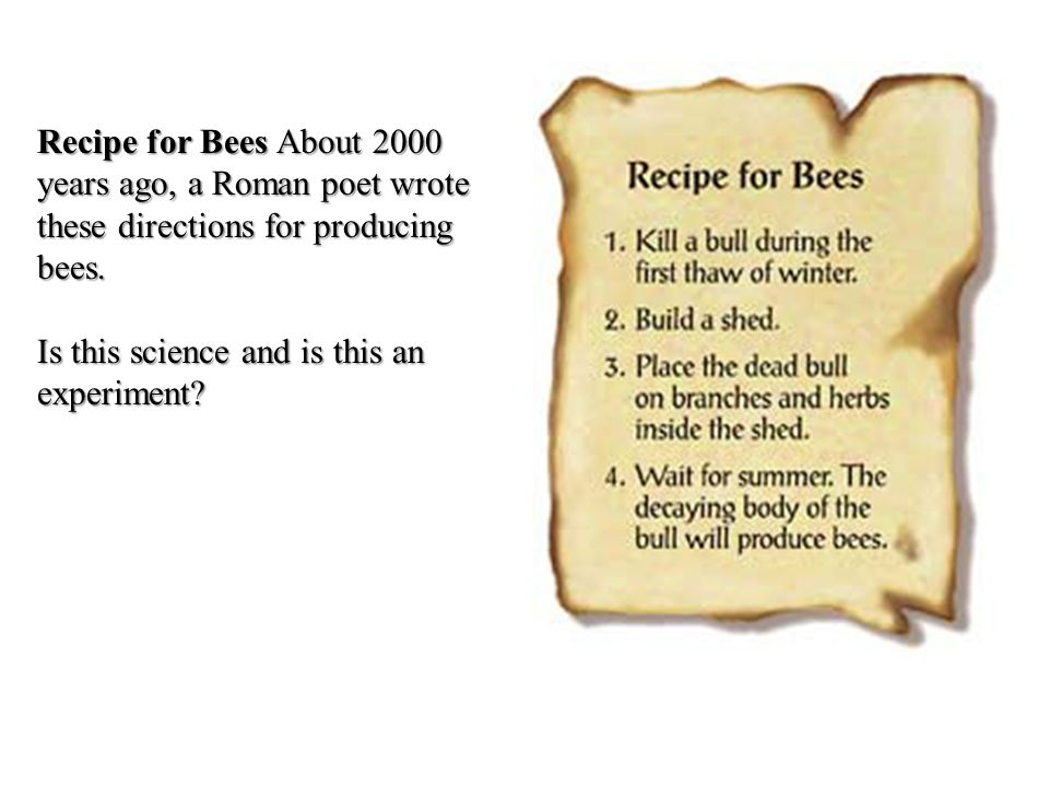 Recipe for Bees About 2000 years ago, a Roman poet wrote these directions for producing bees.