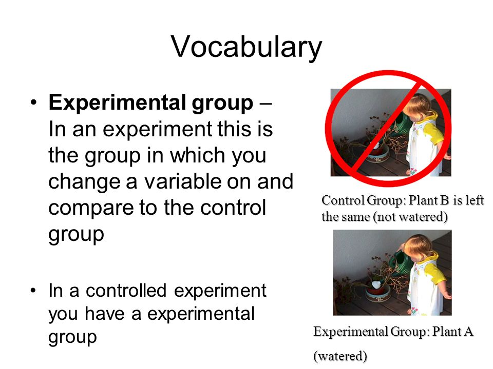 Vocabulary Experimental group – In an experiment this is the group in which you change a variable on and compare to the control group.