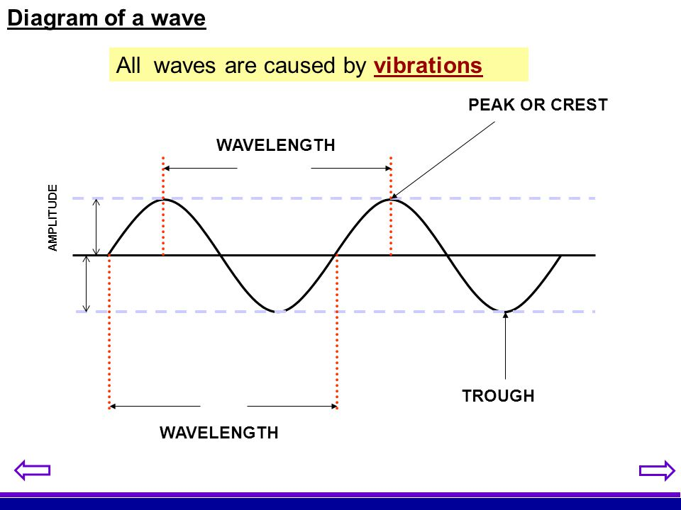 All waves are caused by vibrations