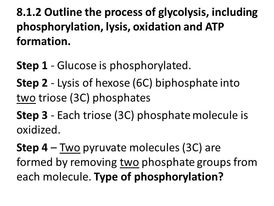 8.1.2 Outline the process of glycolysis, including phosphorylation, lysis, oxidation and ATP formation.