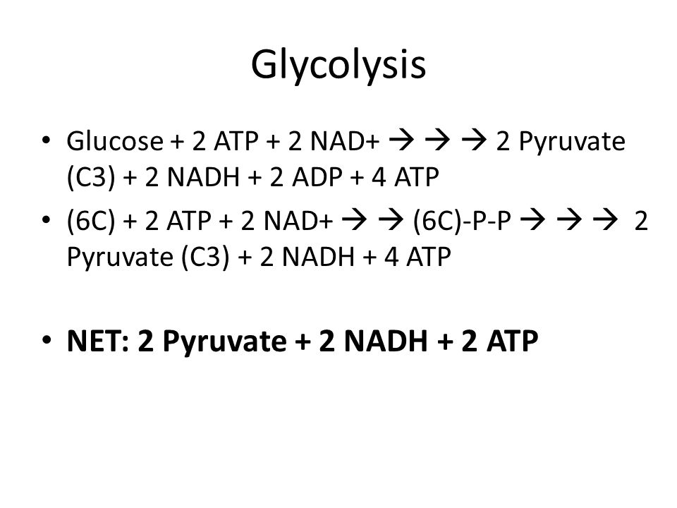 Glycolysis NET: 2 Pyruvate + 2 NADH + 2 ATP