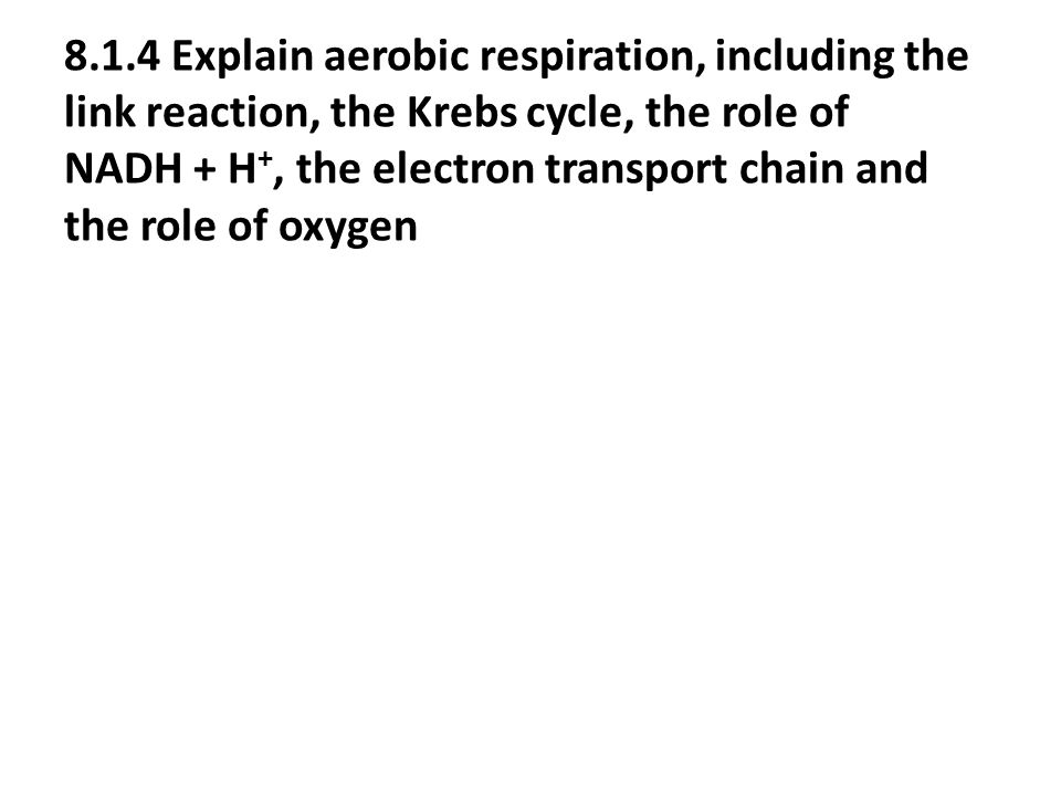 8.1.4 Explain aerobic respiration, including the link reaction, the Krebs cycle, the role of NADH + H+, the electron transport chain and the role of oxygen