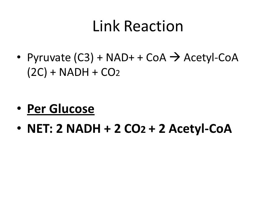 Link Reaction Per Glucose NET: 2 NADH + 2 CO2 + 2 Acetyl-CoA