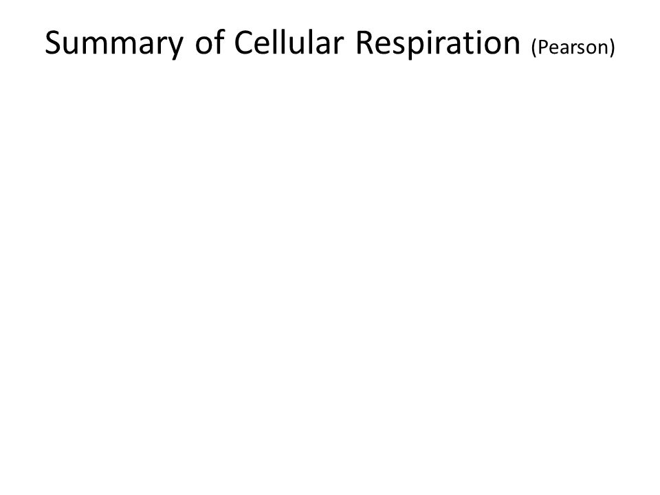 Summary of Cellular Respiration (Pearson)