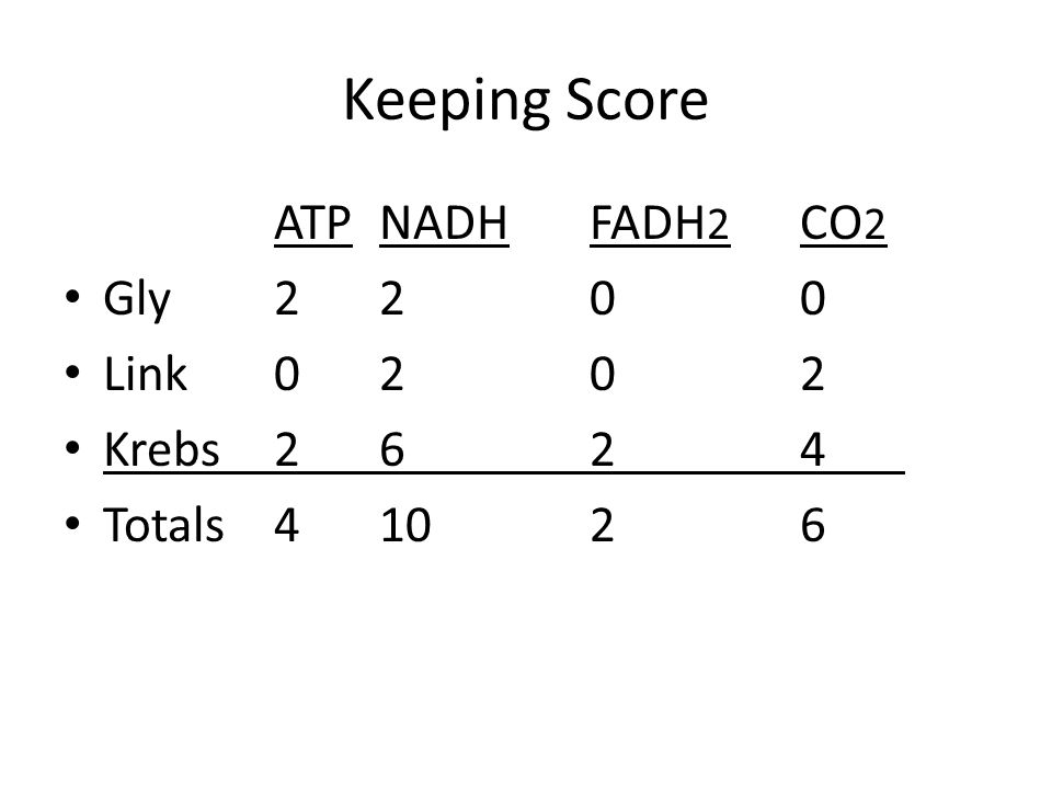 Keeping Score ATP NADH FADH2 CO2 Gly 2 2 0 0 Link 0 2 0 2