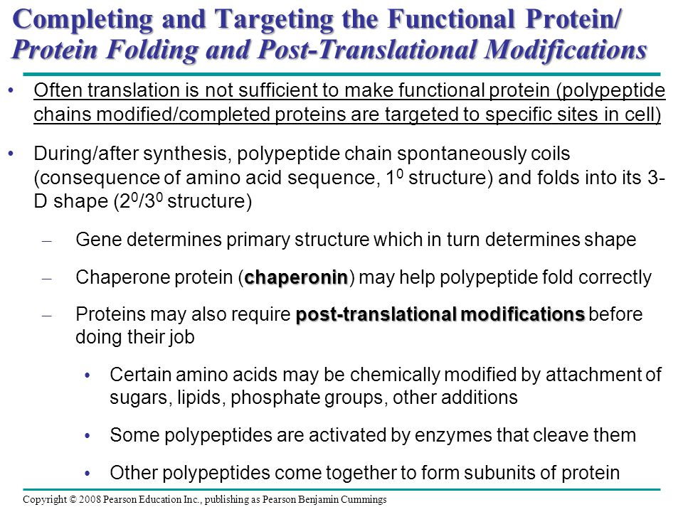 Completing and Targeting the Functional Protein/ Protein Folding and Post-Translational Modifications