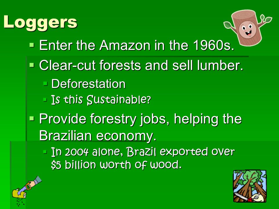 Loggers Enter the Amazon in the 1960s.