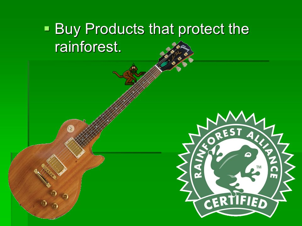 Buy Products that protect the rainforest.
