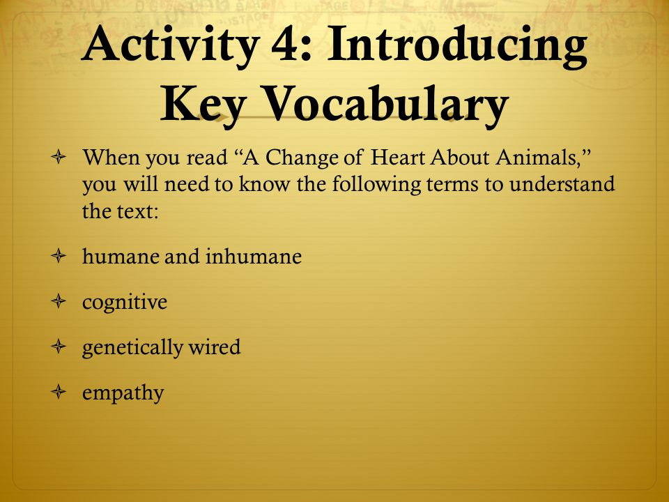 Activity 4: Introducing Key Vocabulary