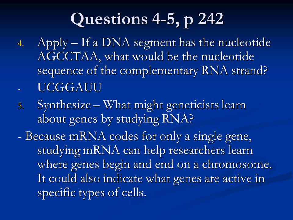 Questions 4-5, p 242 Apply – If a DNA segment has the nucleotide AGCCTAA, what would be the nucleotide sequence of the complementary RNA strand
