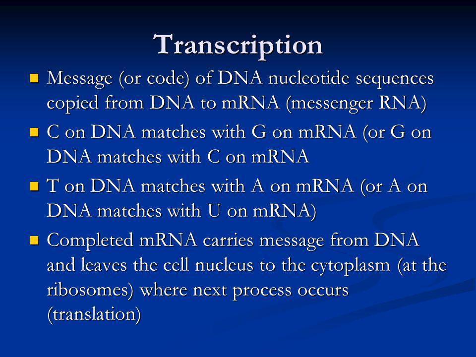 Transcription Message (or code) of DNA nucleotide sequences copied from DNA to mRNA (messenger RNA)