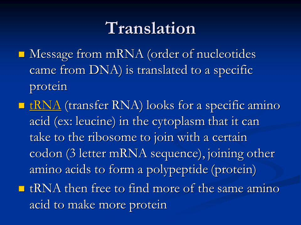 Translation Message from mRNA (order of nucleotides came from DNA) is translated to a specific protein.