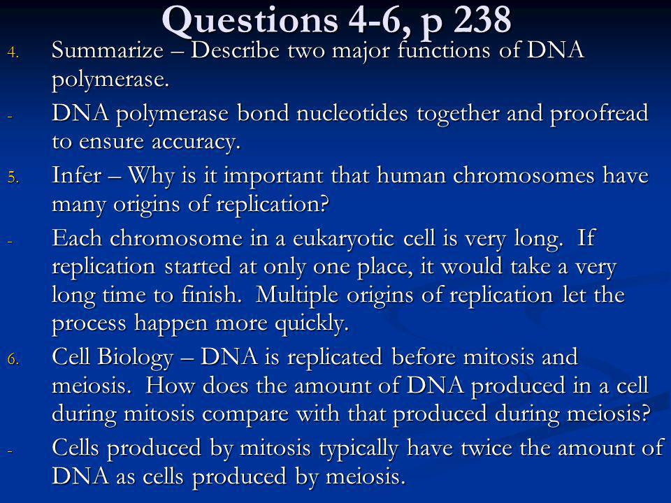 Questions 4-6, p 238 Summarize – Describe two major functions of DNA polymerase.