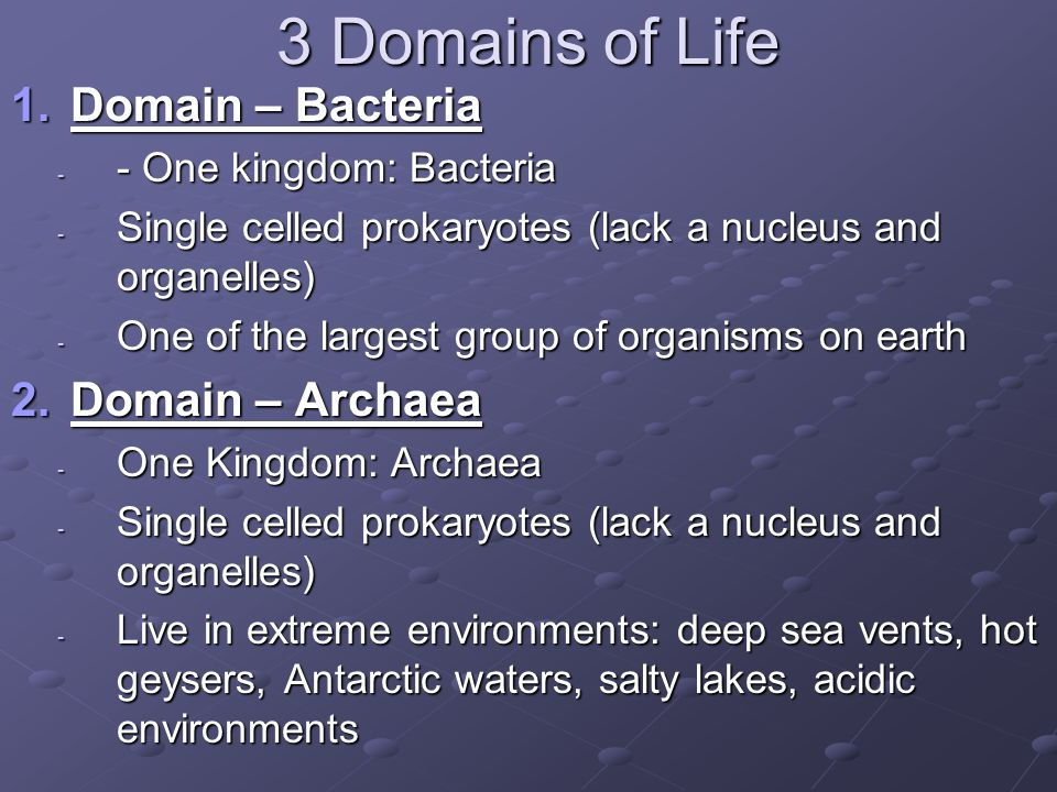 3 Domains of Life Domain – Bacteria Domain – Archaea