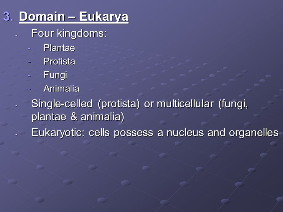 Domain – Eukarya Four kingdoms: