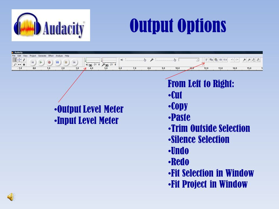 Output Options From Left to Right: Cut Copy Paste