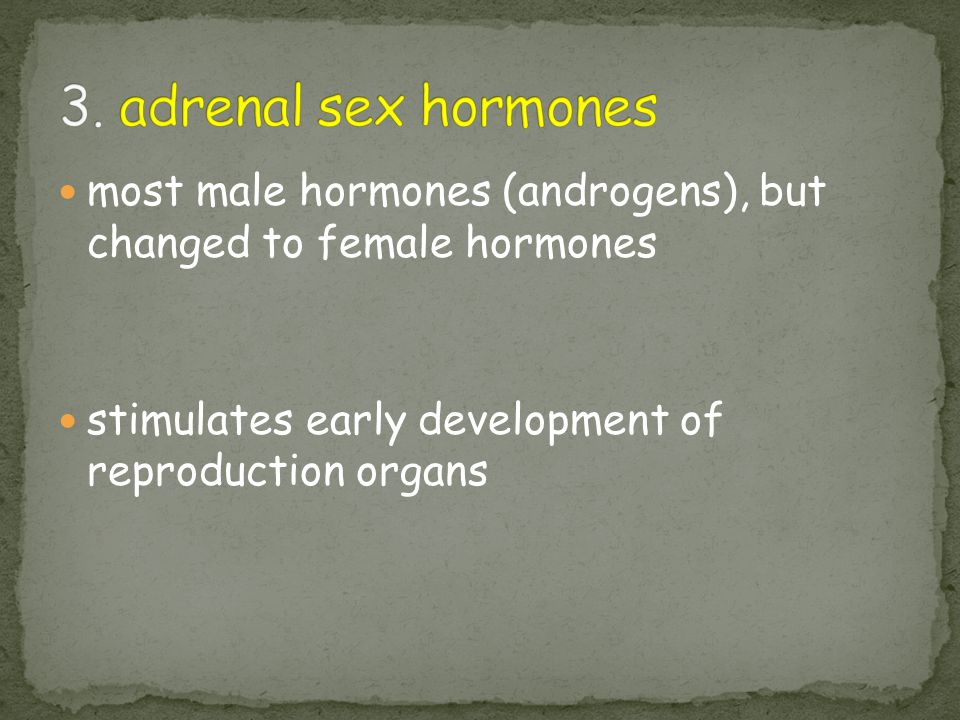 3. adrenal sex hormones most male hormones (androgens), but changed to female hormones.
