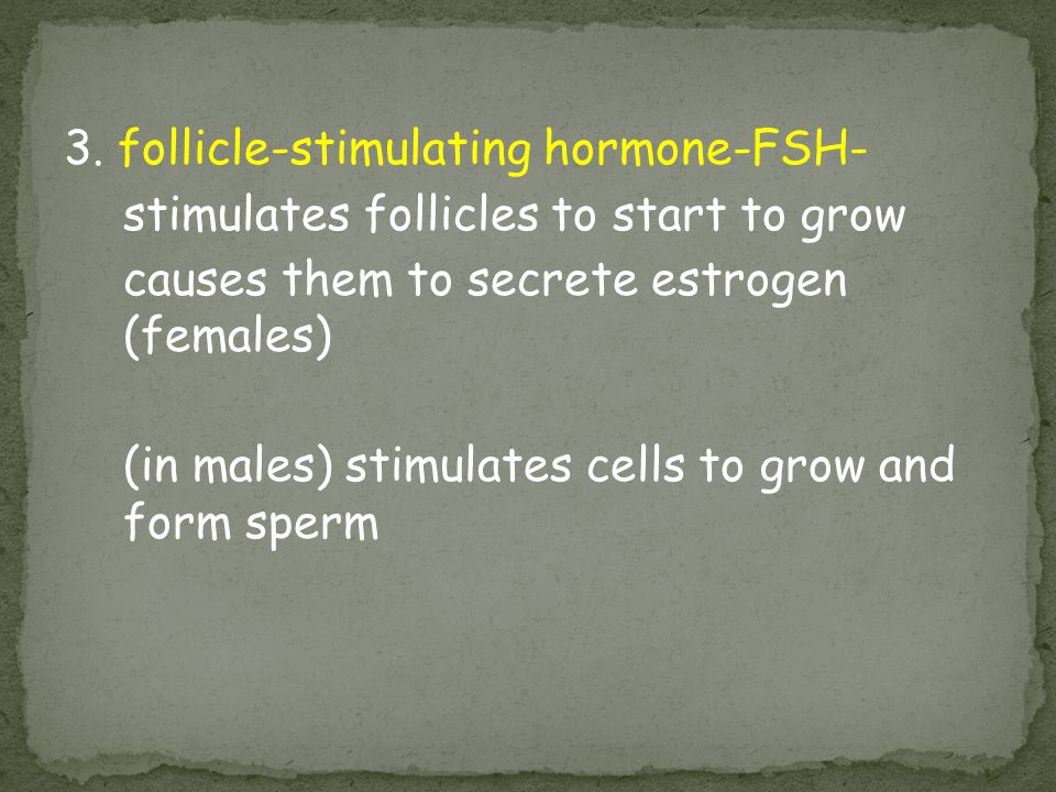 3. follicle-stimulating hormone-FSH-