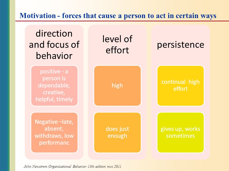 direction and focus of behavior level of effort persistence