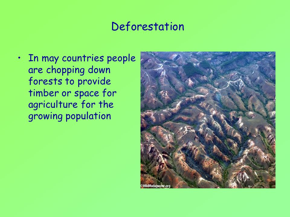 Deforestation In may countries people are chopping down forests to provide timber or space for agriculture for the growing population.