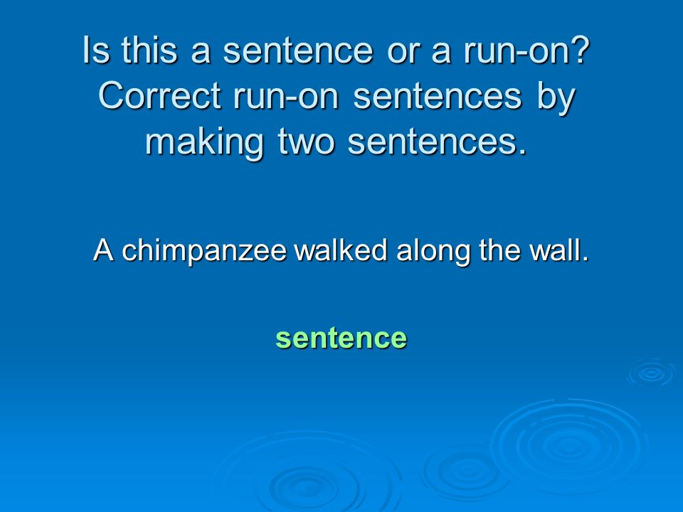 A chimpanzee walked along the wall.