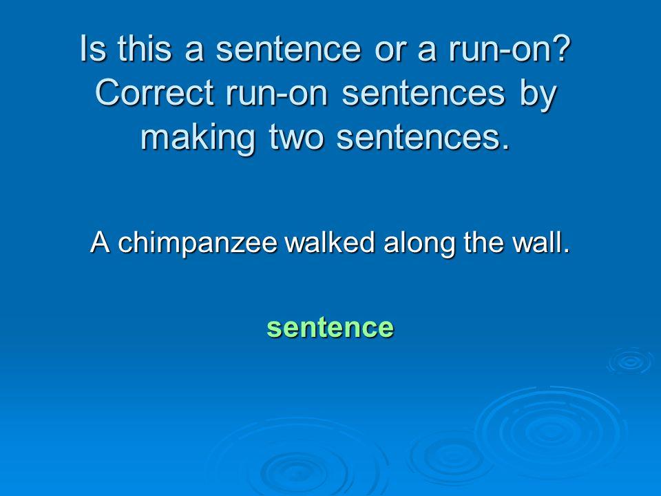A chimpanzee walked along the wall.