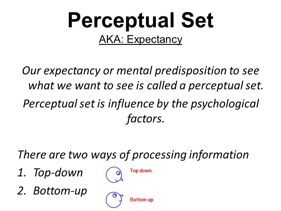 Perceptual Set AKA: Expectancy